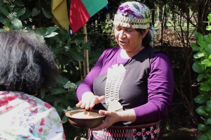 Tour Cultural Mapuche Pucon